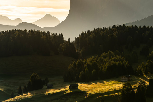 Alpe di Siusí (Golden Morning Light)
