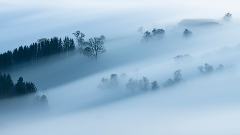 Misty Mostviertel 1.jpg