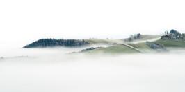 In A Sea of Fog