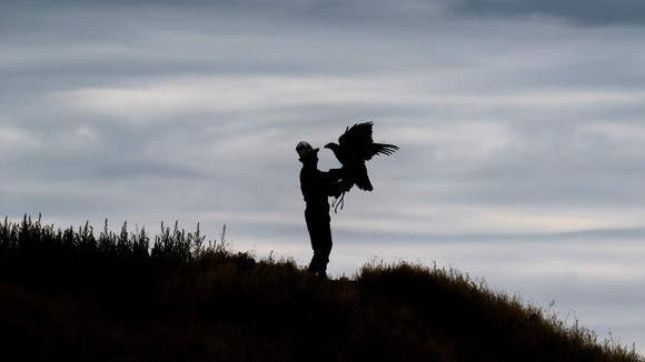 The Man & The Eagle (Silhouette)