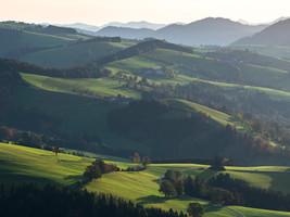 Mostviertel Hills