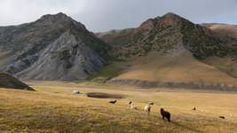 Nomads Land.jpg