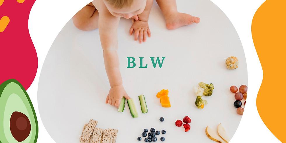Workshop Baby-Led Weaning (BLW) | Online