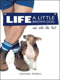 Life, A Little Brown Dog and Shite Like That