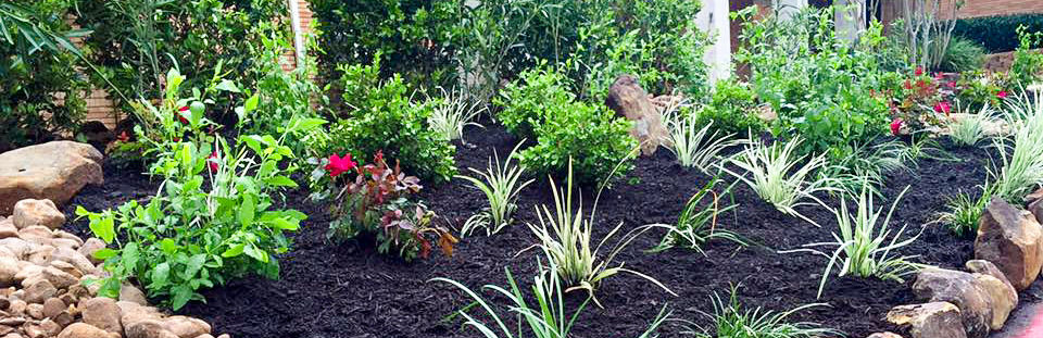 landscaping and lawn care huntsville tx