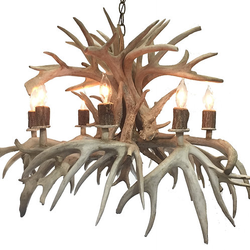 Inverted Antler Whitetail Deer Eight Light Antler Chandelier