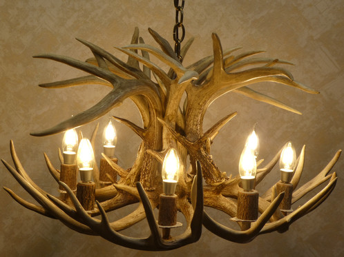 8 light real whitetail antler chandelier eight light tamarack single tier real whitetail deer antler chandelier aloadofball Image collections