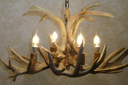 Sale Priced Four Light Whitetail Deer Antler Chandelier