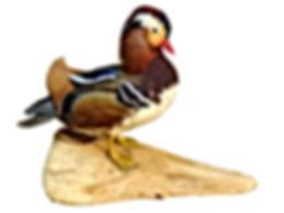 Flying Turkey Taxidermy Mount