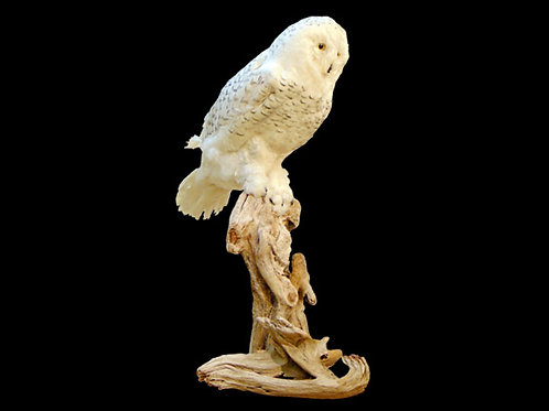 Faux Snow Owl Seated Taxidermy Mount