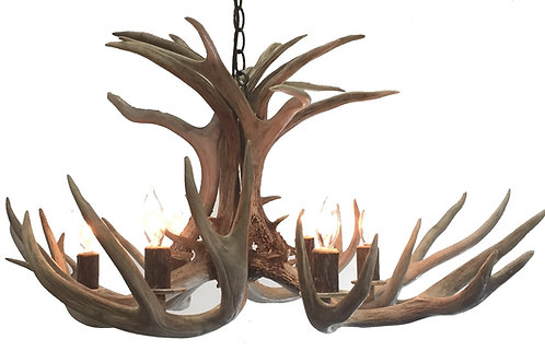 Six Light Mule Deer Antler Chandelier