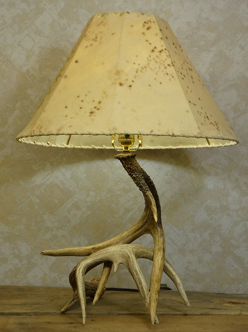 2 Antler Real Whitetail Antler Table Lamp