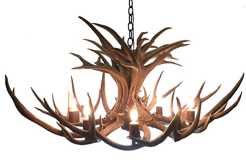 Eight Light Mule Deer Single Tier Antler Chandelier