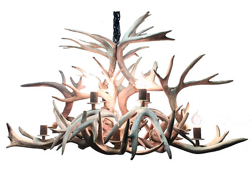 Isle Royale Real Whitetail Antler Chandelier Large