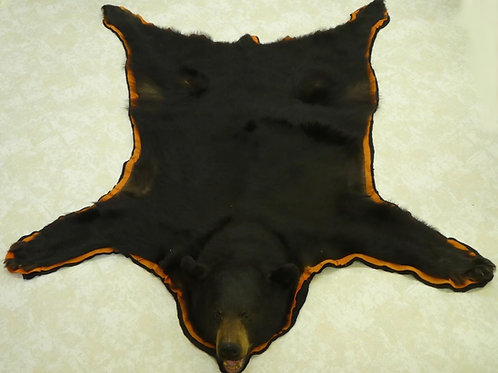 Large Taxidermy Black Bear Rug For Sale