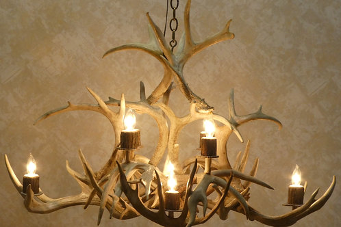 Eight Light Whitetail Deer Antler Chandelier For Sale