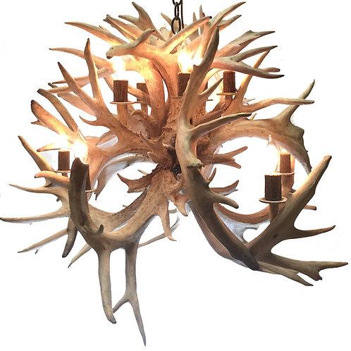 Sale Priced Whitetail Deer Fireball Eight Light Antler Chandelier