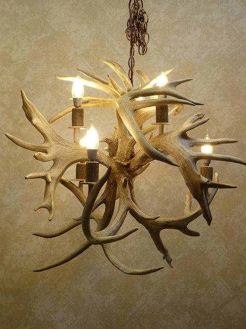 "Sale Priced Six Light Whitetail Deer Antler Chandelier ""Fireball"""
