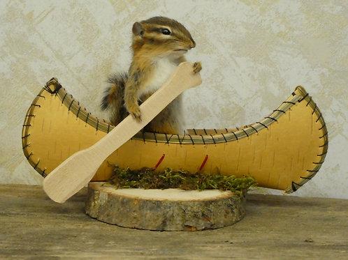Canoeing Chipmunk Taxidermy