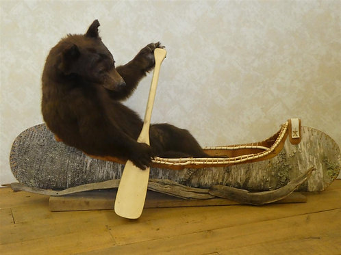 Canoeing Black Bear Taxidermy Mount