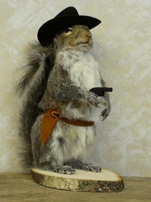 Cowboy Squirrel Taxidermy