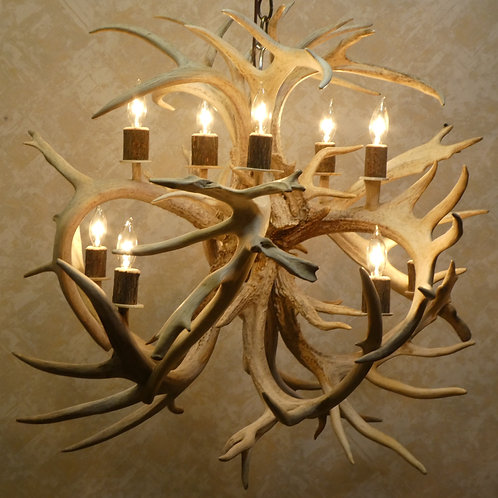 Sale Priced Ten Light Whitetail Deer Antler Chandelier Large