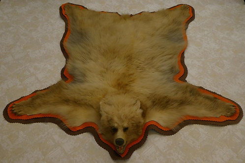Cinnamon Phase Black Bear Rug For Sale Taxidemy