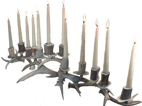 12 candle antler candelabra