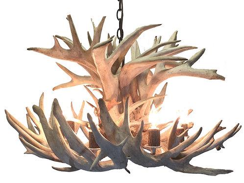 XL eight light tamarack real whitetail deer antler chandelier