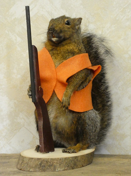 Hunting Squirrel Taxidermy