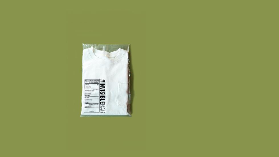 Website Banner_Pillow Seal Green.png