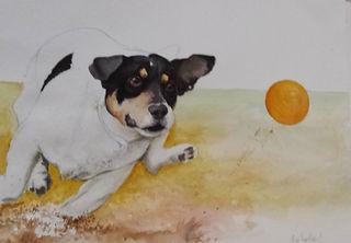 chien, balle, aquarelle, dessin