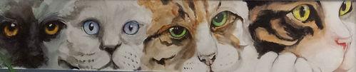 Regards de chats, aquarelle