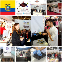 WEIS_FESTIVAL_SENS_&_CHOCOLAT_Origine_Equateur_et_Pralinés