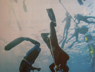 Free Diving Isn't Free