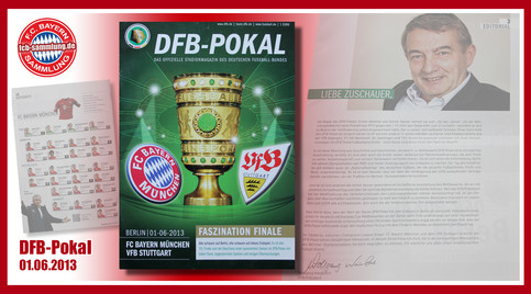 DFB-Pokal 2013