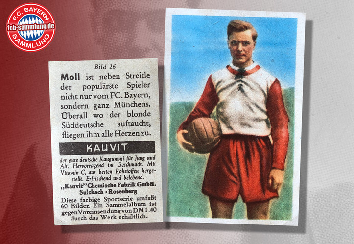 Herbert Moll