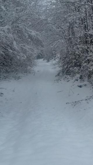 L'hiver en toute sérénité
