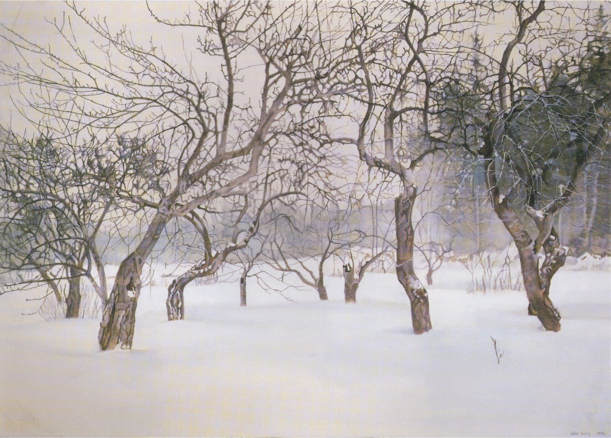 The Orchard in Winter I