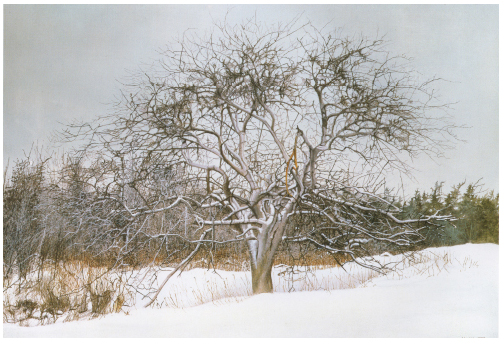 The Four Seasons – Winter