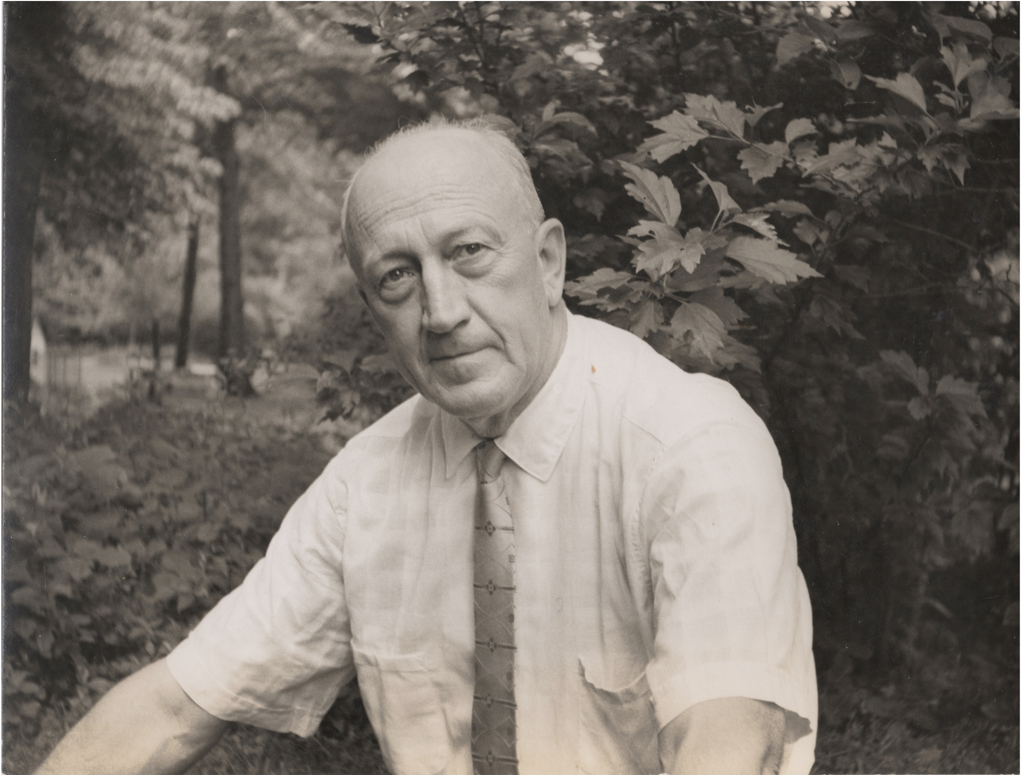 Franklin Wulp