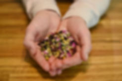 Christina herbs.jpg