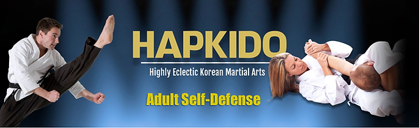 Hapkido Banne 5.png