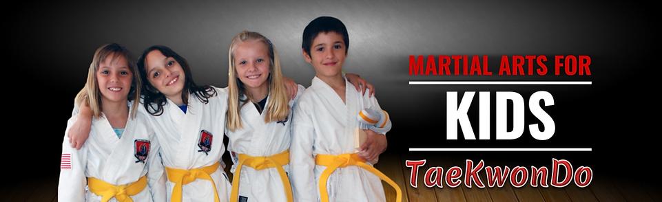 taekwondo kids 2.png