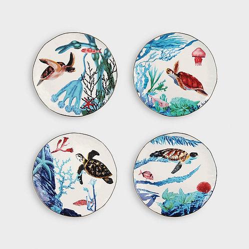 Ocean plates van & Klevering