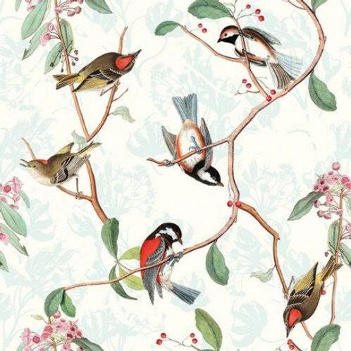 Servetten Songbird