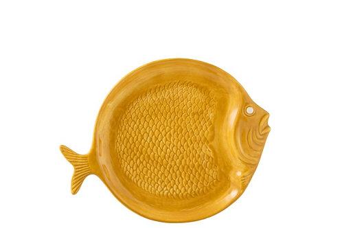 Bord vis