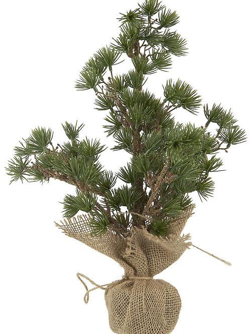 Kerstboom ceder - m