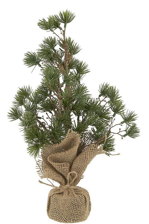 Kerstboom ceder - s