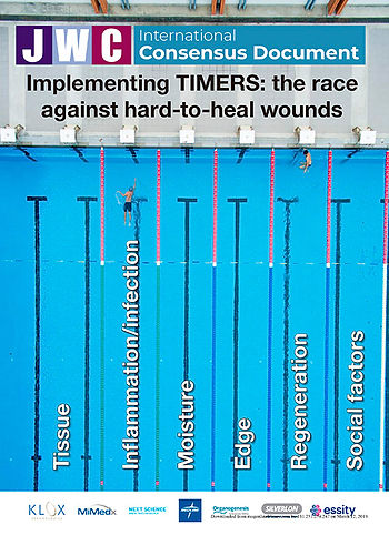 Article_Implementing_TIMERS_the_race_aga